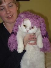 "My ""Grand-cat"""
