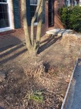 front-flowerbed-trimmed