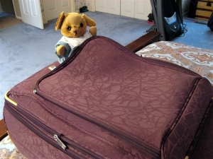 Dee's Suitcase